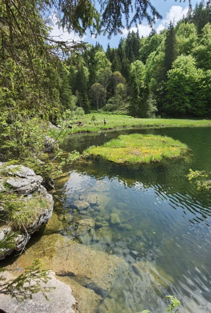 Die kleine Insel im Taubensee Schleching
