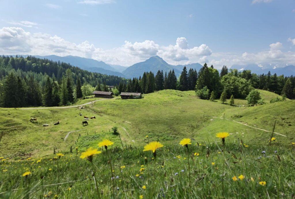 Taubensee Wanderung - mit viel Panorama bei der Moosenhütte