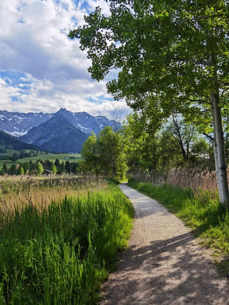 Der Walchsee Rundweg führt einmal rund um den See in Tirol