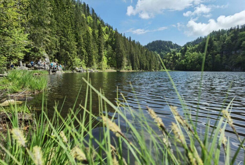 Blick auf den Taubensee in den Chiemgauer Alpen